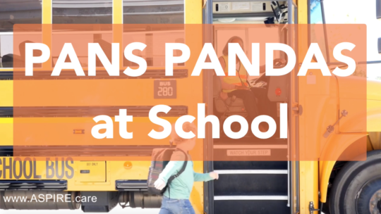 Video – PANS PANDAS at School