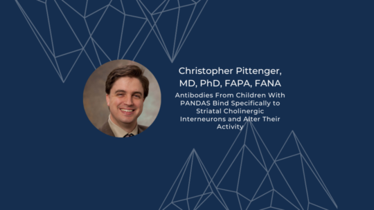 Antibodies From Children With PANDAS Bind Specifically to CINs and Alter Their Activity
