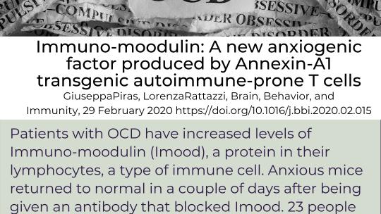 Antibodies for OCD