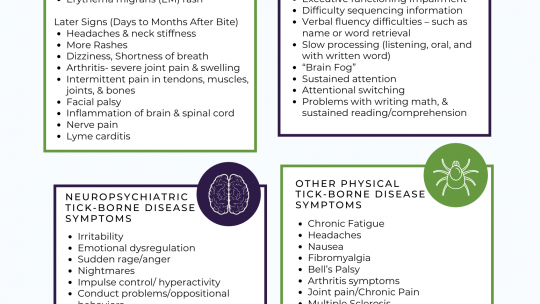 Lyme Disease Symptom Overview
